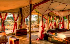 Glam Camping in South Africa